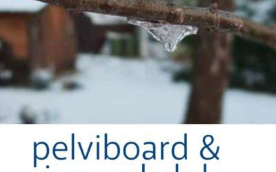 Journal Club et Pelviboard, fevrier 2020