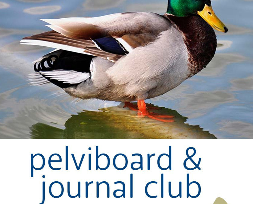 Journal Club et Pelviboard, septembre 2020